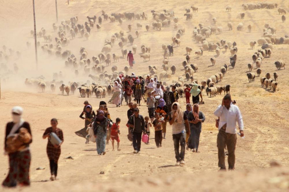 iraq-yazidi